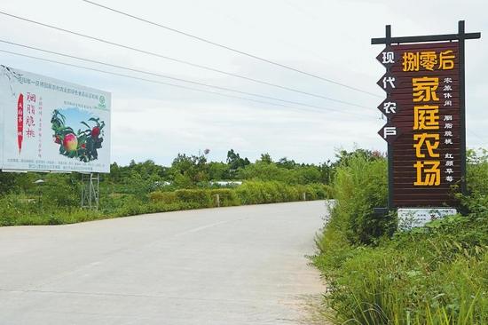 四川启动现代农户家庭农场培育计划 每户最高奖30万元